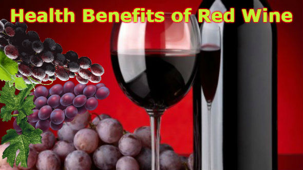A bottle and a glass of red wine, wine grapes on a table.